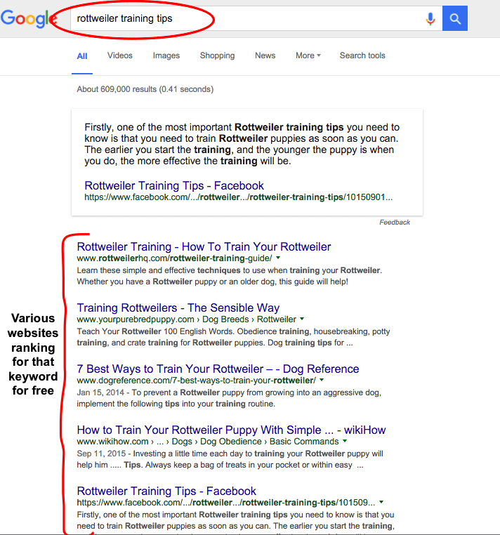 Niche website and keyword example