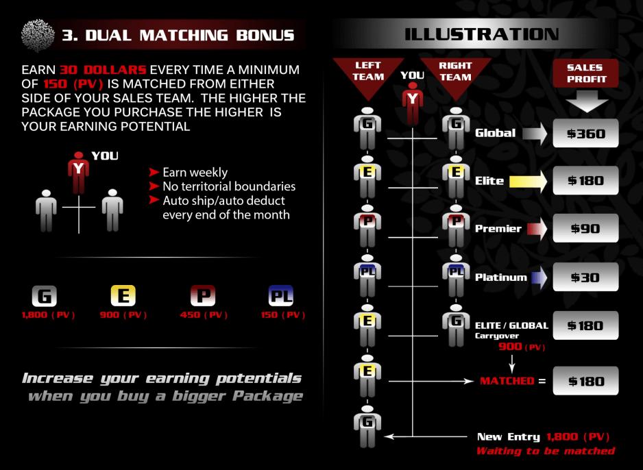Dual Matching Bonus chart