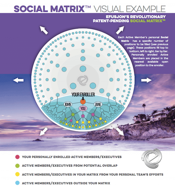 Social Matrix Compensation Structure