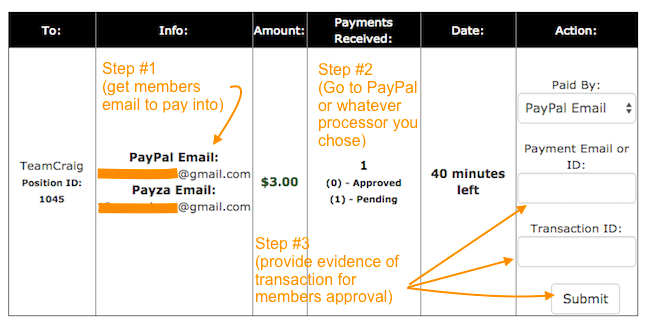 PaidInstantly.Club Payment process