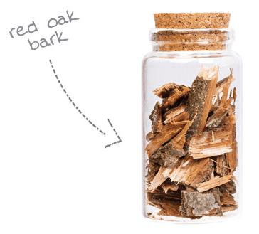 Bark Extract