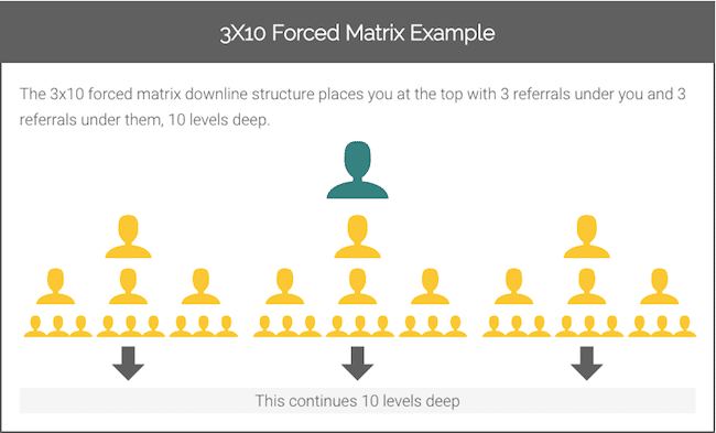 3X10 Forced Matrix