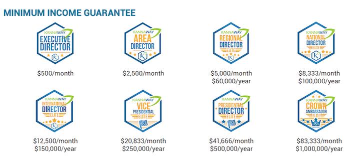 Minimum Income Guarantee