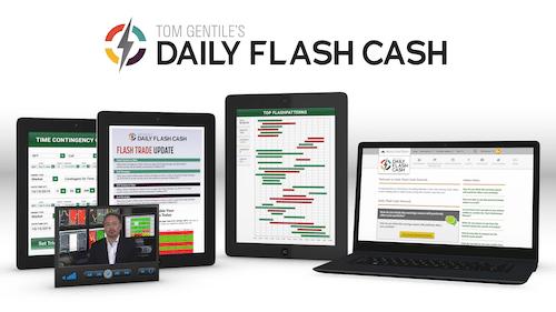 Daily Flash Cash subscription contents